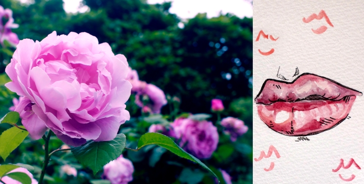 Do Kisses Like Roses Look Loveliest Before You Lose Them?